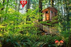 Treehouse Hotels | Destination Dorworth Learn about the top treehouse hotels around the world that you can stay at for a unique and once in a lifetime and adventurous treehouse vacation.<br> Learn about the top treehouse hotels around the world that you can stay at for a unique and once in a lifetime and adventurous treehouse vacation.