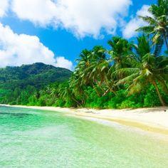 Basdaku Beach Moalboal, Philippines