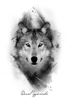 I really like the color only being in the eyes grey tattoo, wolf eye tattoo Wolf Tattoos Men, Animal Tattoos, Tattoo Wolf, Wolf Tattoo On Back, Wolf Tattoo Sleeve, Arrow Tattoo, Inca Tattoo, Female Tattoos, Wolf Tattoo Design
