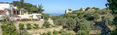 http://www.apuliarentals.com/italiano/ville-e-casali-in-affitto-puglia/lamia-l-aranceto-vista-mare/