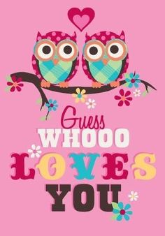 Guess whooo loves you love quotes cute pink hearts pattern owls valentines day