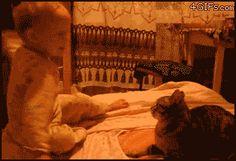 Ahhh....sweet revenge....little butt~head might think twice before he smacks a cat!!
