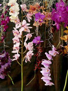 Vier liefde, blijdschap en bloemen