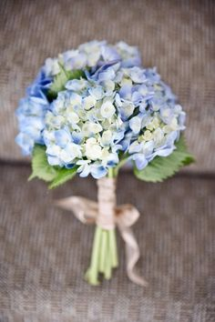 Hydrangeas remind me of my grandmother who passed away. I would love to use them in the wedding.