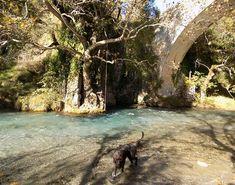 Εάν θέλεις να γεμίσεις τα σαββατοκύριακα σου με χρώματα και εμπειρίες, μια επίσκεψη στην Ορεινή Αρκαδία και το Λούσιο ποταμό αρκεί... Landscapes, Greek, Water, Outdoor, Water Water, Paisajes, Aqua, Outdoors, Greek Language