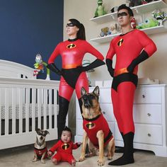 Happy Halloween Here's a family who really get into the Halloween spirit Featured account @thedunderboy  #halloween #gsdsofigworld #gsd #germanshepherd #incredibles #dogs #dogsofinstagram #awesome #happyhalloween by gsdsofigworld