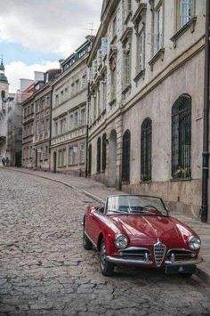 1465 Best Hersh S Alfa Romeos Images In 2019 Alfa Romeo Cars