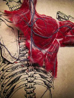 Dan Beckemeyer uses hand-made abaca paper to combine a highly detailed illustration of the human skeletal system with a stitched cardiovascular system and hand-felted muscle mass. Textiles, Arte Gcse, Frida Art, A Level Art, Oeuvre D'art, Textile Art, Textile Design, Natural Forms, Fiber Art