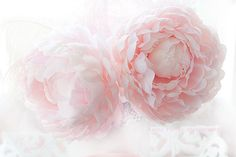 Pink Peony Print Dreamy Pink Peony Photos Shabby Chic Pink