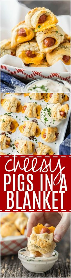 These CHEESY PIGS IN A BLANKET with RANCH PARMESAN BUTTER will be all the rage at your next party. They're easy, fun, and oh so delicious. Lil' Smokies wrapped in sharp cheddar, crescent roll dough, and brushed with parmesan ranch butter are sure to be a hit. via @beckygallhardin