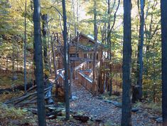 The Treehouse Guys Build Wheelchair Accessible Treehouses