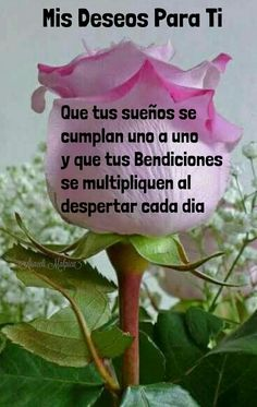 Happy Day Quotes, Cute Good Morning Quotes, Good Night Quotes, Good Morning Good Night, Good Night Friends, Good Night Wishes, Good Night Greetings, Morning Greetings Quotes, Good Morning In Spanish