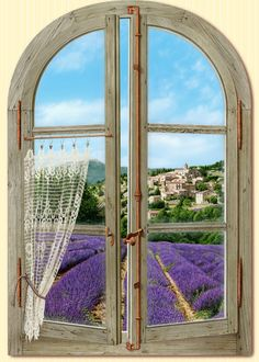 "this just makes me smile for some reason.Lavender: ""Fenêtre sur la Provence"" (""Window on Provence""), by Bernard Scholl. Lavender Cottage, Lavender Fields, Lavender Garden, Lavender Blue, Beautiful World, Beautiful Places, Looking Out The Window, Provence France, Provence Style"