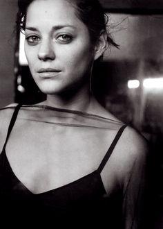 ex-intimo:    Marion Cotillard.