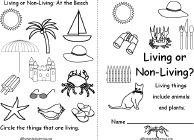 1000 images about science living non living on for Living and nonliving things coloring pages