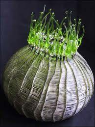 cathy strokowski glass