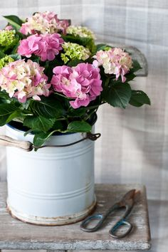 not ours, but we have an enamel bucket just like this that would look lovely filled with hydrangeas at your wedding entry - gorgeous photo Ilva Beretta