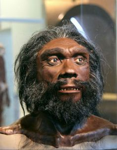 homo-heidelbergensis-300-384-27 These were first discovered back in 1908. They lived 600,000 and 200,000 years ago in Africa, Europe and western Asia and stood between 5.2 and 5.9 feet tall. It is thought they communicated via many different sounds and hunted using spear-like tools.