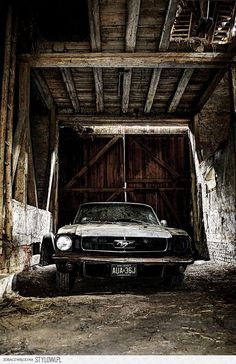 Mustang seen better days sports cars cars vs lamborghini cars sport cars Abandoned Cars, Abandoned Places, Abandoned Vehicles, My Dream Car, Dream Cars, Classic Mustang, Mustang Cars, 1965 Mustang, Mustang Gt500