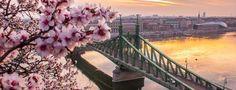 Встречай весну в Будапеште!  Вылеты а/к МАУ гарантированный блок каждый день, кроме среды.   Подробную информацию по этому и другим отелям/датам запрашивайте у наших менеджеров по Tel/sms/Viber/What's up ☎️+380674406810 / +380677242928 либо по Tel +38 (044) 599-97-79!