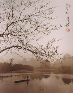 photographs that look like traditional chinese paintins dong hong-oai asian pictorialism (24)