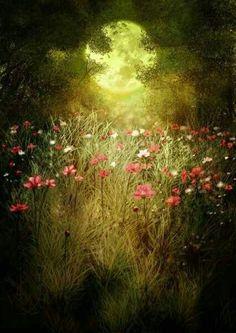 Beautiful moon glow on the flowers. Moon Moon, Moon Art, Full Moon, Big Moon, Beautiful Moon, Beautiful World, Beautiful Places, Beautiful Moments, Beautiful Flowers