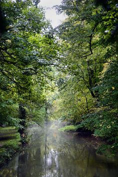 A slow-moving, tree-lined river.  A Regency Retreat Near Bath - Slide Show - NYTimes.com