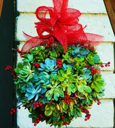 10 Ways to Use Succulents for the Holidays