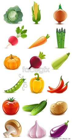 Download fresh vegetables vector graphics
