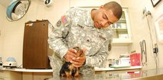 Like animals? Soldier's take care of puppies too, as Animal Specialists in the U.S. Army!