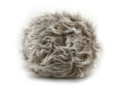 Fuzzy Fun with the Frizzle!!