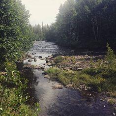 Au coeur de la nature #voyage #travel #sweden #nature by chris_voyage #travel