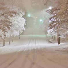Winter Wonderland in Winston-Salem North Carolina 2-26-2015