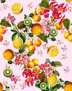 https://www.behance.net/gallery/32163469/Botanic-fruit-pattern