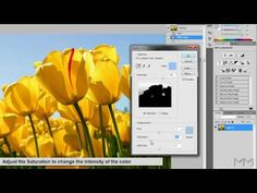 Photoshop CS5 - Replace Color Tutorial - YouTube