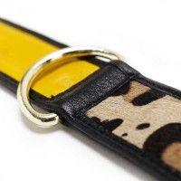 collier pour chien Leopard