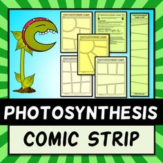 Photosynthesis Comic Strip - Project