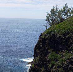 GRANDE-ANSE (3/7) - Oiseau Blanc... - Françoise et son ti rocher à la Réunion