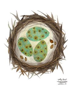 Print: Bird Nest  Medium: archival giclee reproduction print, open edition Paper type: 100% cotton rag paper  Size: 11 x 8.5 inches, 28 x 21cm,