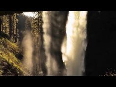Virtual Hike to (& behind) North Falls; Silver Falls State Park, Oregon