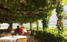 15+1 borterasz, mely minden Balaton-rajongó szívét megdobogtatja