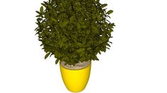 Vaso com Arbusto - 3D Warehouse