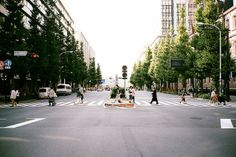 横断歩道 ++ photography by : tamotsu nagata