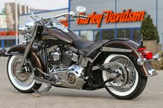 A 110th Anniversary Edition of the H-D Heritage Softail.