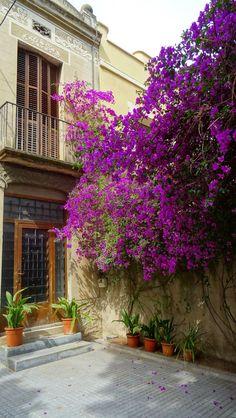 https://flic.kr/p/udSRqs   Carrer Campoamor, Horta, Barcelona