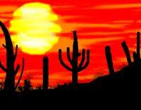 Cactus silhouettes