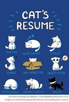 Oh My Freaking Stars!: Kitty Resume