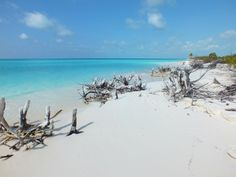 Playa Paraiso Beach Reviews - Cayo Largo, Cuba Attractions - TripAdvisor