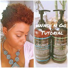 Natural Hair: RenPure Coconut Creme Wash N Go