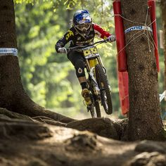 #tbt @rachybox running the #1 plate at Val Di Sole back in 2013. We can't wait to get back there this season @gtbicycles @redbull @rideshimano (Photo: @svenmartinphoto)